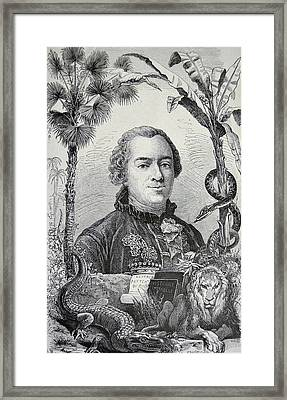 Georges-louis Leclerc Framed Print by Universal History Archive/uig