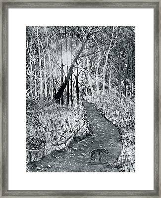 Georgia Bear On The Move Framed Print by Leo Gehrtz
