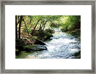Georgia Water Framed Print by Tim Hall