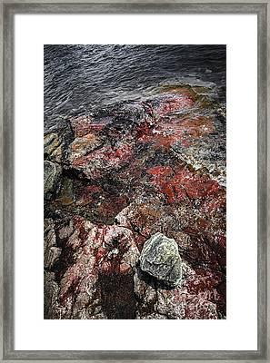 Georgian Bay Rocks Abstract IIi Framed Print by Elena Elisseeva