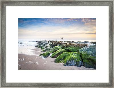 Georgica East Hampton Framed Print by Ryan Moore