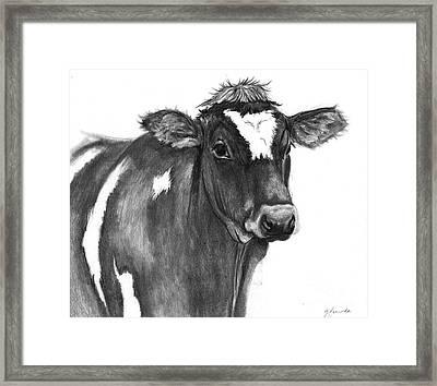Georgie Framed Print by J Ferwerda