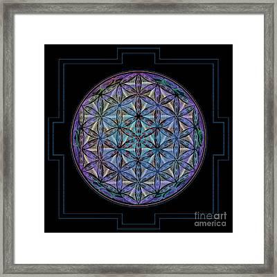 Geoshroom Framed Print