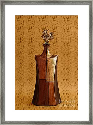 Geovase - 01ap Framed Print by Variance Collections