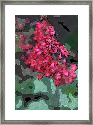 Geranium Abstract Framed Print by Christiane Schulze Art And Photography