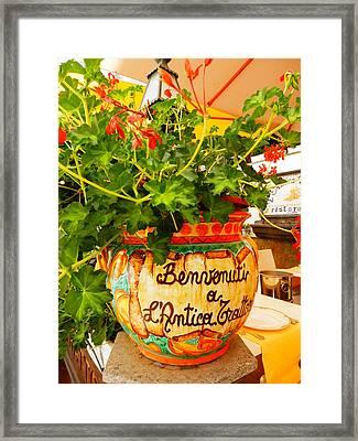 Geranium Planter Framed Print
