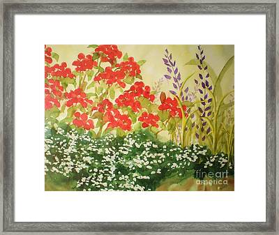 Geraniums And Friends Framed Print