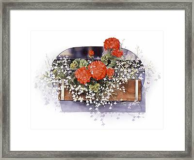 Geraniums Framed Print