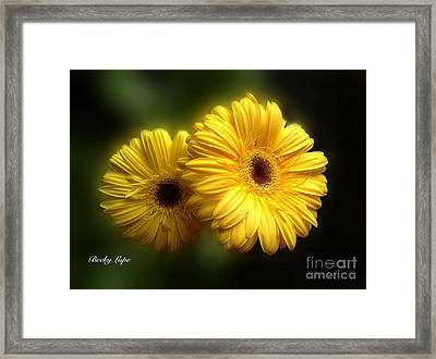 Gerber Babies Framed Print by Becky Lupe