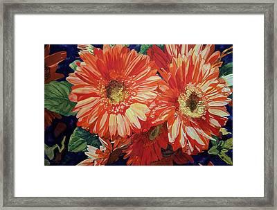 Gerber Delight Framed Print