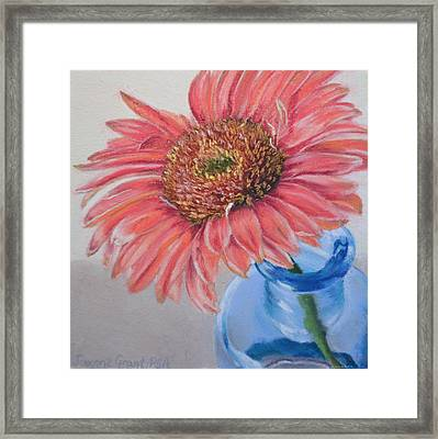 Gerbera Daisy With Blue Glass Framed Print