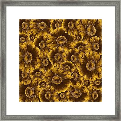Gerbera Flowers Awash In Sepia   Framed Print by David Dehner