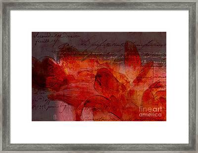 Gerberie - 77at2 Framed Print