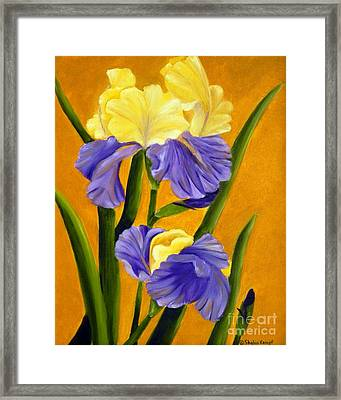 Framed Print featuring the painting German Bearded Iris  by Shelia Kempf