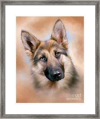 German Shepherd Dog Framed Print by Linton Hart