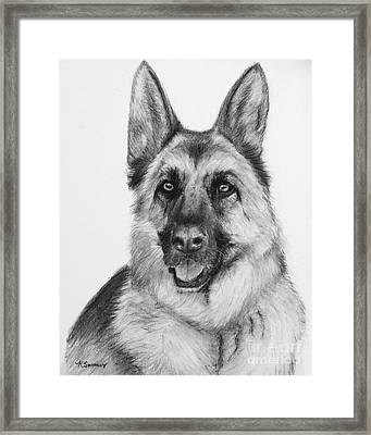 German Shepherd Drawn In Charcoal Framed Print