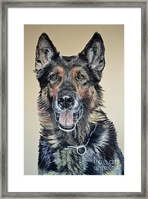 German Shepherd Jim Framed Print by Ann Marie Chaffin