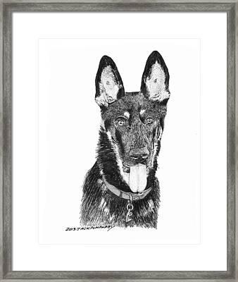 German Shepherd Kimo Framed Print