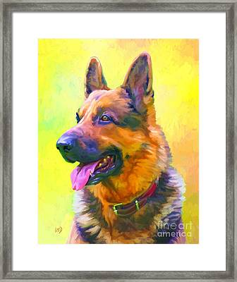 German Shepherd Portrait Framed Print by Iain McDonald