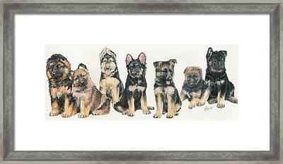 German Shepherd Puppies Framed Print