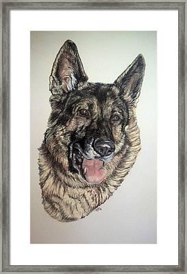 German Shepherd Rudi Framed Print by Ann Marie Chaffin
