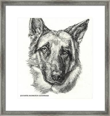 German Shepherd Sketch No.1 Framed Print