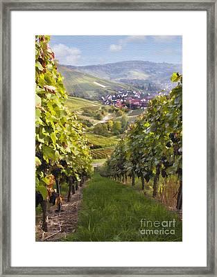German Vineyard Framed Print by Sharon Foster