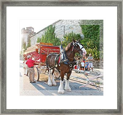Getting Hitched Framed Print