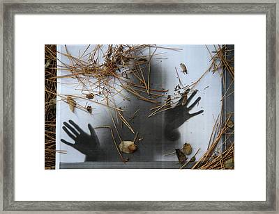 Getting Out Framed Print