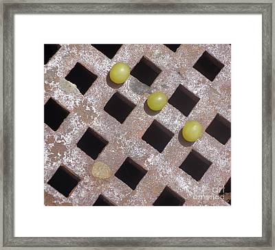Getting Through An Obstacle Course Framed Print