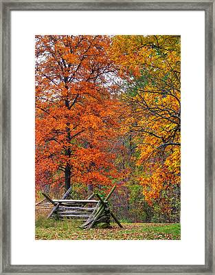Gettysburg At Rest - Autumn Colors In The Rose Woods Along Sickles Avenue - Autumn Early Afternoon Framed Print by Michael Mazaika