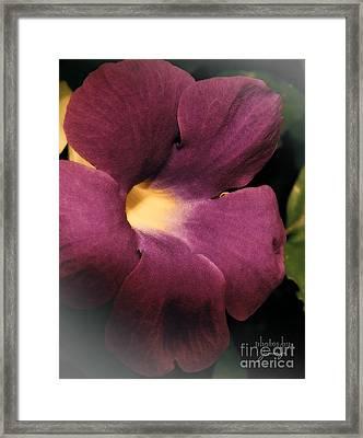 Ghana Violet Framed Print
