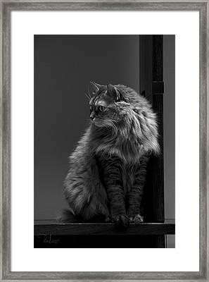 Ghiga Posing In Black And White Framed Print