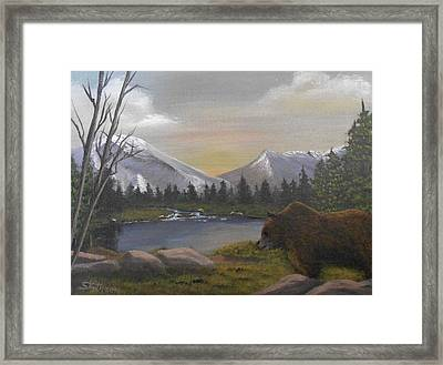 Ghost Bear-the Cascade Grizzly Framed Print
