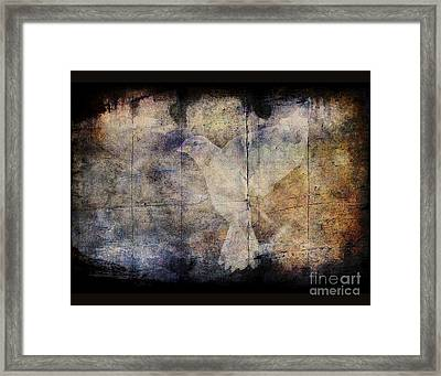 Ghost Bird Framed Print by Jim Wright