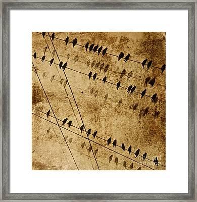 Ghost Birds On A Wire Framed Print by Deborah Talbot - Kostisin