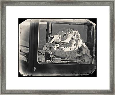 Framed Print featuring the photograph Ghost Car Of Equine Death by David Bailey
