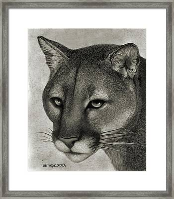 Ghost Cat Framed Print by Miki Krenelka