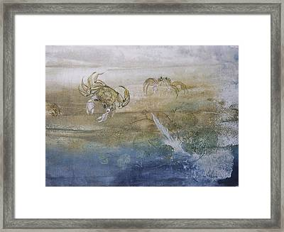 Ghost Crab Framed Print by Nancy Gorr