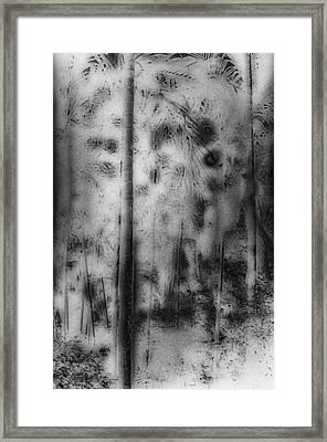 Ghost Forest Framed Print by Charles Garrett