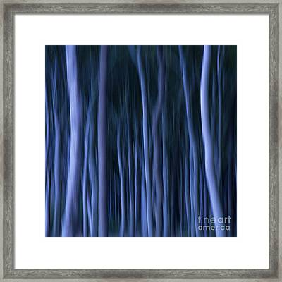 Ghost Forest Framed Print by Heiko Koehrer-Wagner