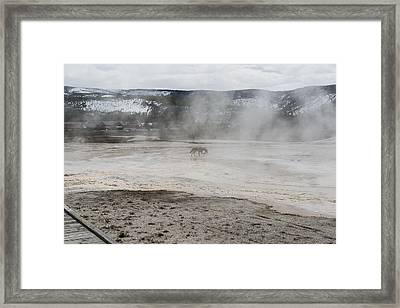 Ghost In The Mist Framed Print