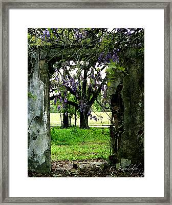 Ghost Near The River Framed Print