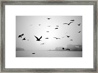 Framed Print featuring the photograph Ghost Ship by AJ  Schibig
