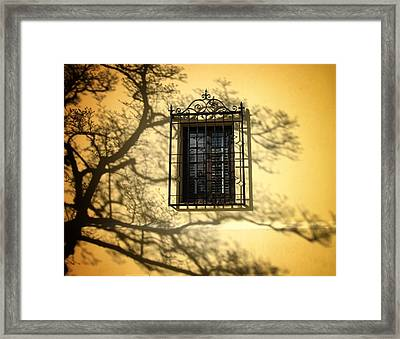 Ghost Tree Framed Print by Mary Ann Southern