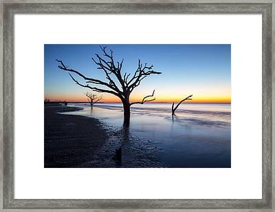 Ghost Trees Of Boneyard Beach 10 Framed Print