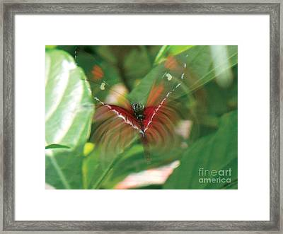 Ghostly Arches Framed Print by Kryztina Spence