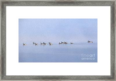 Ghosts In The Mist Framed Print by Skip Willits