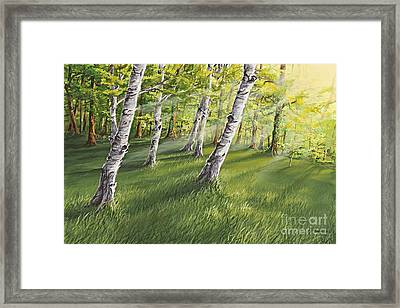 Ghosts In The Woods Framed Print