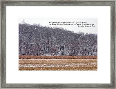 Ghosts Of Fallen Leaves Framed Print by Nikolyn McDonald